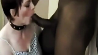 cuckold husband films hotwife bull bbc blowjob homemade pov